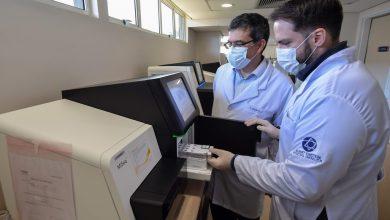 au-bresil,-des-tests-genetiques-pour-un-depistage-de-masse-du-coronavirus
