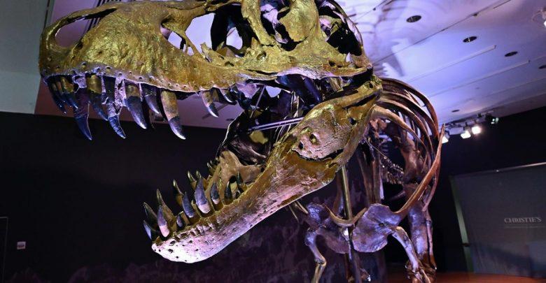 un-t-rex-vendu-31,8-millions-de-dollars