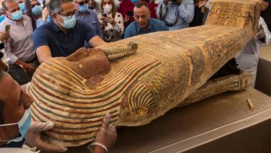 l'egypte-devoile-59sarcophages-de-plus-de-2500ans
